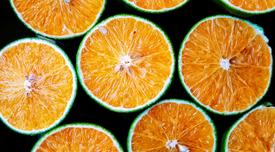 Vitamine C pour une belle peau, Docteur Molinari, dermatologue, lasers à Paris